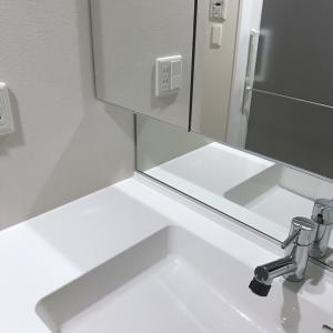 月初の洗面所のお掃除