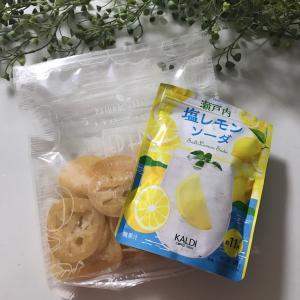 カルディで購入した塩レモンソーダで疲労回復