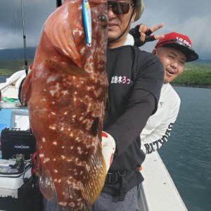 湾内ロックフイッシュ!オオモンハタ、キジハタ、クエタマに真鯛、ブリ 鹿児島 錦江湾 海晴丸