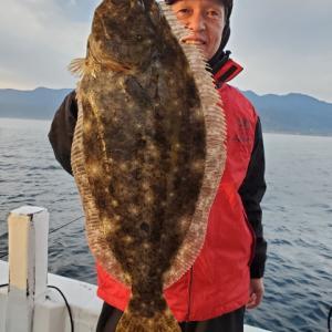 寒ヒラメ大判きました!湾内ライトヒラメ鹿児島 錦江湾 海晴丸