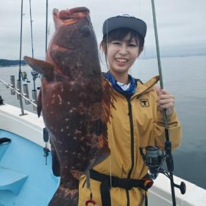湾内ロックフィッシュでキジハタ、オオモンハタ 鹿児島錦江湾海晴丸