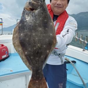 ライトヒラメ船てヒラメにマゴチ 鹿児島錦江湾海晴丸