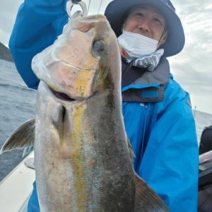 佐多岬ジギングはカンパチとハガツオ 鹿児島 錦江湾 海晴丸