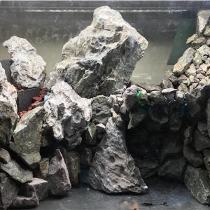 滝と池と崖のあるアクアテラリウムの作り方 〜流水テストとカミハタ液状接着剤を試す〜