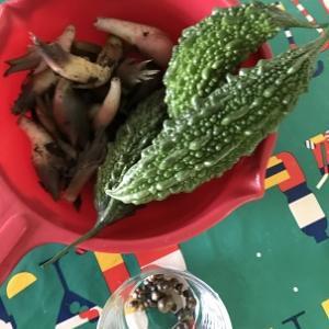 レモスコ漬けと野菜たち