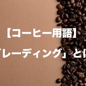 【コーヒー用語】グレーディング