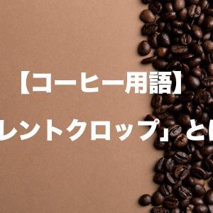 【コーヒー用語】カレントクロップ