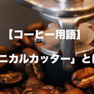 【コーヒー用語】コニカルカッター