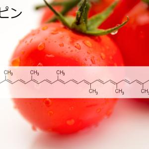 トマトに含まれるリコピンは骨に対して良い効果を持つ~その1~