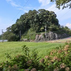 秋葉神社 (岡崎市桑谷町新座山)
