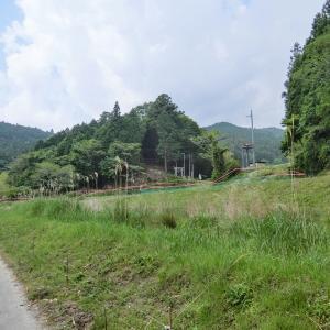 八幡神社 (豊田市平瀬町)