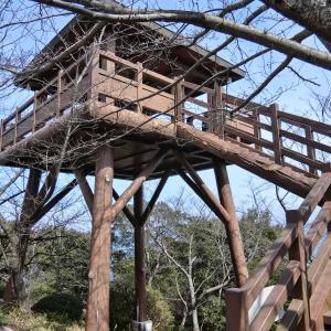 聖崎公園展望台 (知多郡南知多町大井聖崎)