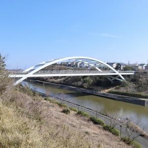 大平大橋 (浜松市西区大平台)