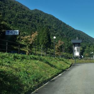 白川郷から琵琶湖経由京都へ、初めての三千院