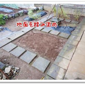今日の菜園(クレーム対応)