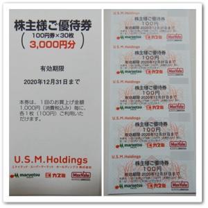 株主優待(USMH)