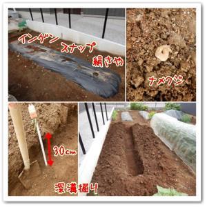 今日の菜園(土作り?)