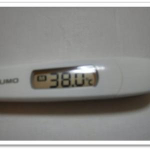 コロナワクチン接種2日目
