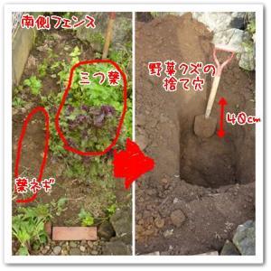 今日の菜園(穴掘り)