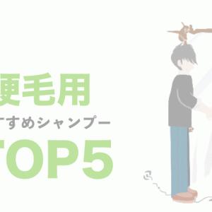 【サロン専売&市販品】美容師が「硬い髪」におすすめするシャンプーTOP5!