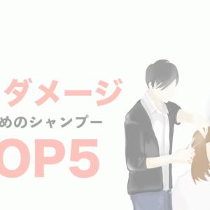 【サロン専売&市販品】美容師おすすめ「ハイダメージケア」シャンプーTOP5!