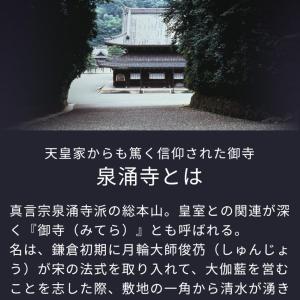 悪病撃退祈願(_ _)