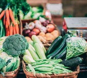 「オーガニック」・「有機」・「無農薬」野菜とはどのように違うのか?