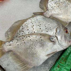 ローカルスーパーNSKの魚売り場にて