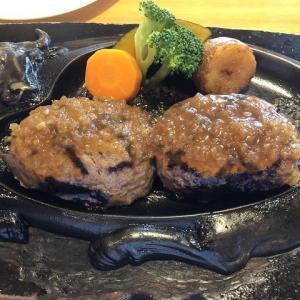 炭焼きレストラン【さわやか】のげんこつハンバーグを食べてきました!
