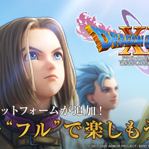 ドラクエ11発売前ワイ「3DS版とPS4版のダブルパック買うで!!!」