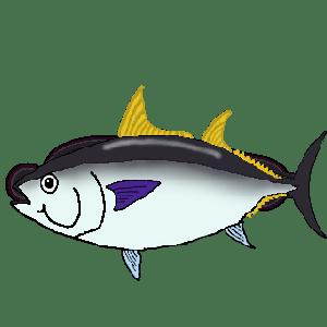 元鮨職人に聞いた魚と料理の話 マグロ編 1