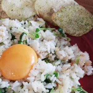 再現レシピ【映画「天気の子」】陽菜ちゃんのチャーハン&サラダ