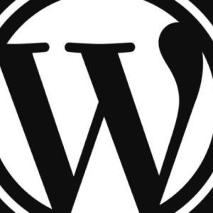 管理者画面につながるのに記事が見えない。<WordPress>