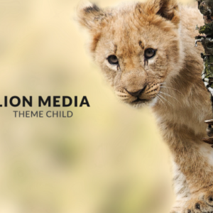 LION MediaのGoogle AnalyticsとGoogle Search Consoleの設定