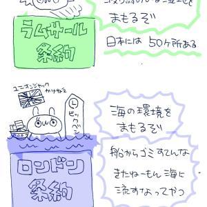 行政書士の試験勉強【ほにゃらら条約】