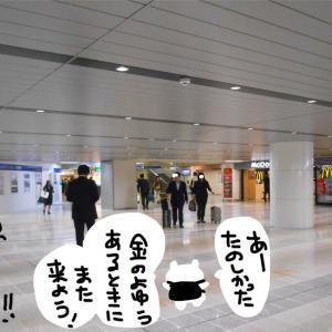 【刀剣乱舞石切丸】大阪の石切神社に遠征いいいいいい!!!【過去日記だよ】