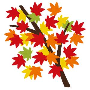 高齢者が秋に気をつける病気は?季節の変わり目は要注意!