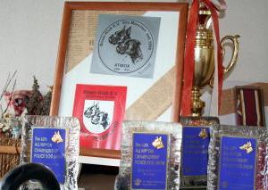 残念・・・今年の特別日本チャンピオン展が開催されない・・・。