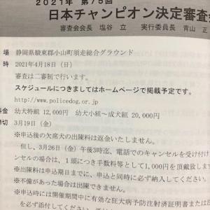 日本チャンピオン展