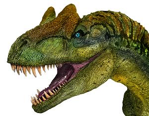 いのちのたび博物館は恐竜だけではありません!モルフォチョウも見てね