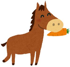 のまうまハイランドは子どもの乗馬体験ができるおすすめスポット