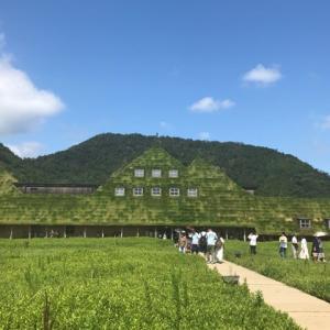 【滋賀】自然に囲まれた近江八幡にあるクラブハリエが素敵すぎる件!