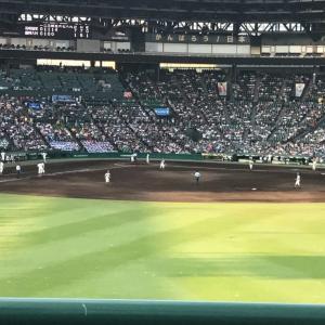 高校野球 甲子園を100倍楽しむためおすすめ座席やアイテム紹介!