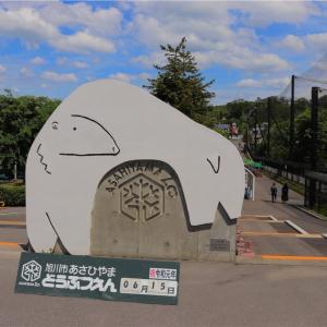 旭山動物園ツアーへ参加!料金は?滞在時間はどうなの?