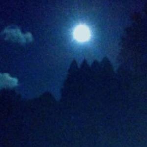 第533◎ 昼と夜