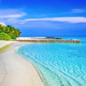 年下男性とのお付き合いってどうなんだろ⑲/ジャマイカ旅行計画 ⑲Planning trip to Jamaica to relive heartbreak⑲