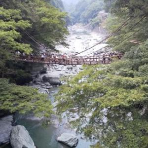 スリル満点!徳島の秘境・祖谷のかずら橋の見どころ・アクセス