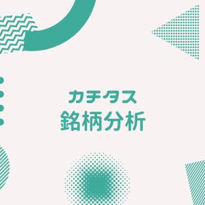 カチタス【8919】銘柄分析