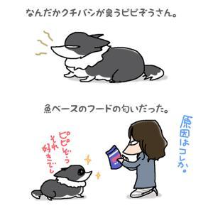 臭いフード・10月18日のピピぞう/【犬マンガ】