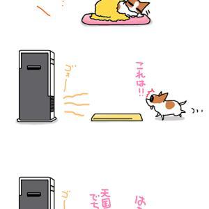 ついに登場・11月11日のピピちく/【犬マンガ】